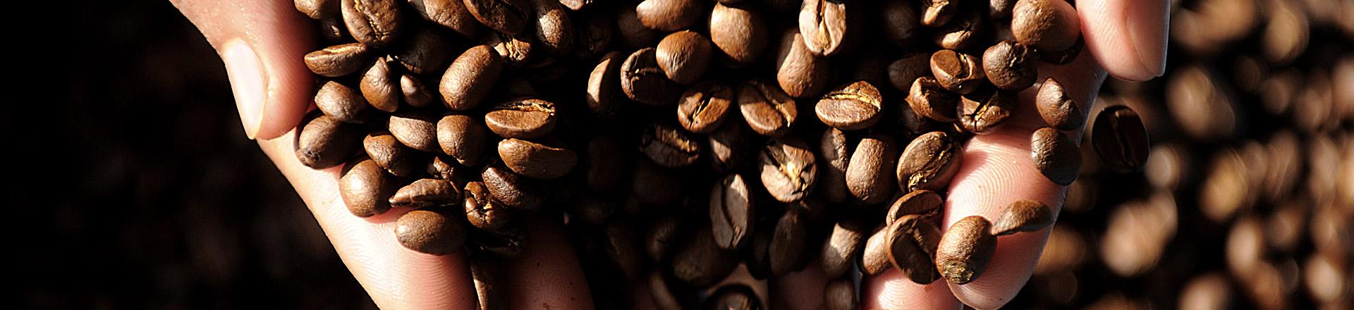 Kaffe fra eget risteri